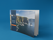 Wealth Options Corporate Synopsis Bookle
