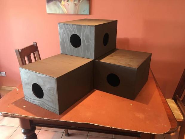 Molt & Bolt Box