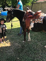 Pony Passion LLC provides professional pony rides and petting zoo for special occasions in Arizona.