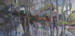 Grassy Waters VI, oil on canvas,  40x70cm