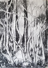 A place is more than a place, charcoal on paper, 76x56cm