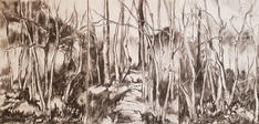 Birches, charcoal on paper, 42x30cmx3