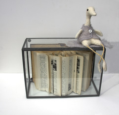 Waiting duck, booksculpture, glasbox, filted duck
