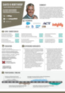 InkedInfographic Resume ERP New Cool Ver
