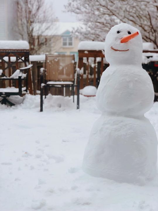 Do you want to build a snow man __!!!! ?