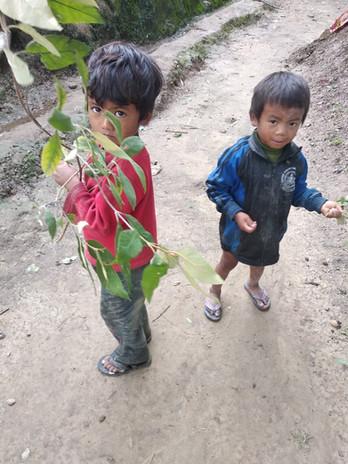 nepal202006241.jpg