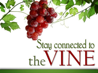 Stay connected to the vine.