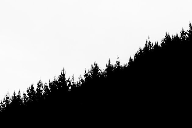 Makara Shadows