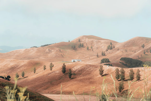 Home on the Hills