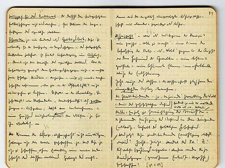 Heidegger's Black Notebooks.jpg