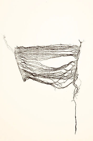 untitled 18 (SRINIVASAN).jpg