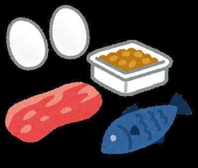 タンパク質の豆知識