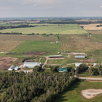 50 Cow Start-up Farm in Leduc County
