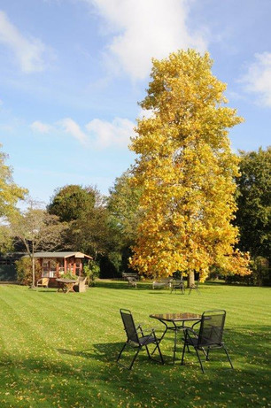 Wisma gardens