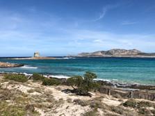 La Pelosa beach (2km)