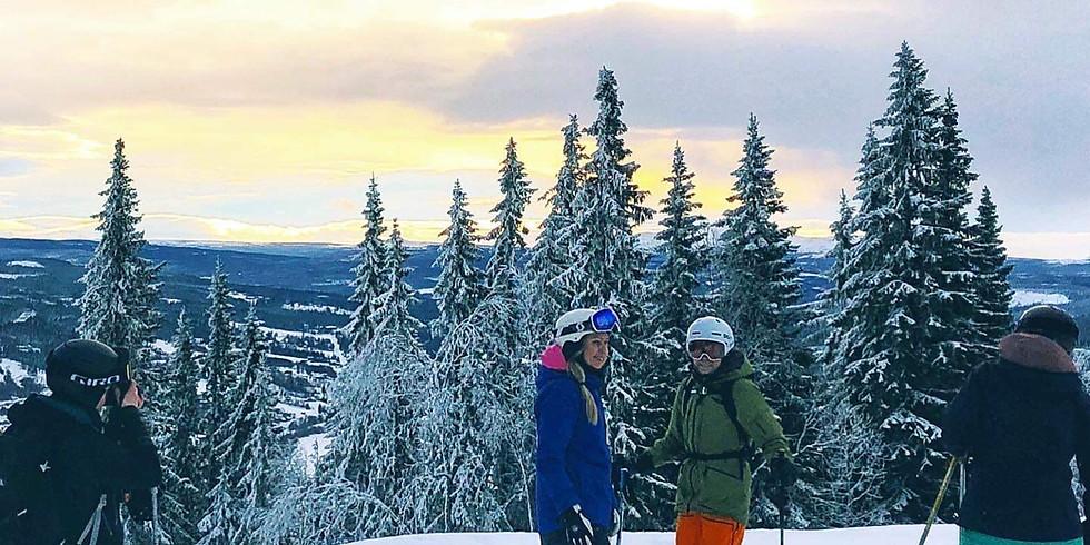 Weekend skidteknik Vemdalen - FULLBOKAD!