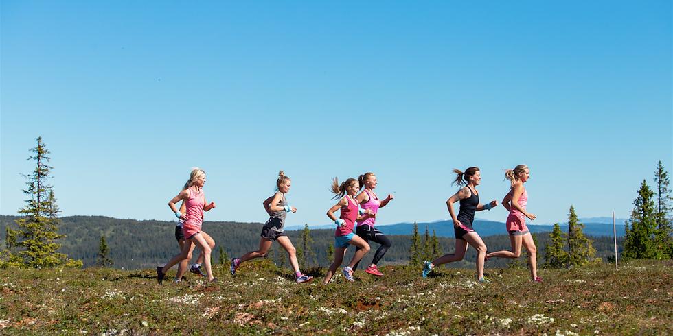 Vandringsdagar och trailrun Årefjällen
