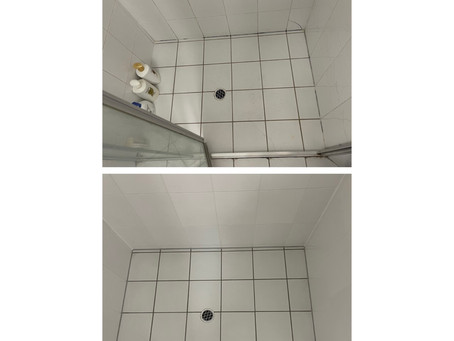 Fresh Grout and Sealant, Some FAQ's