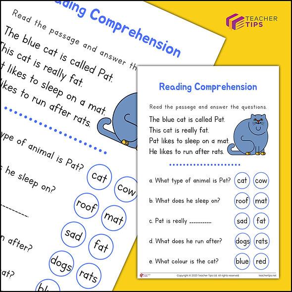 Reading Comprehension - Worksheet #1