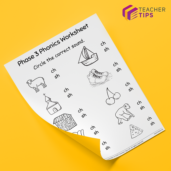 Phase 3 Phonics 'sh and ch' Worksheet #4