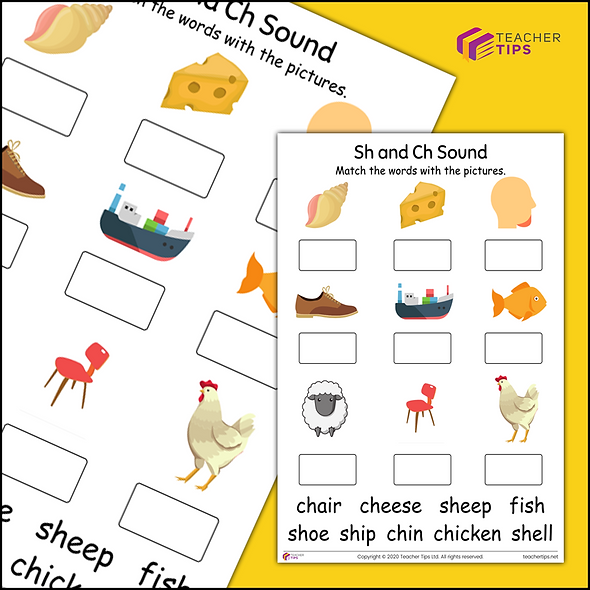 Phase 3 Phonics 'sh and ch' Worksheet #2