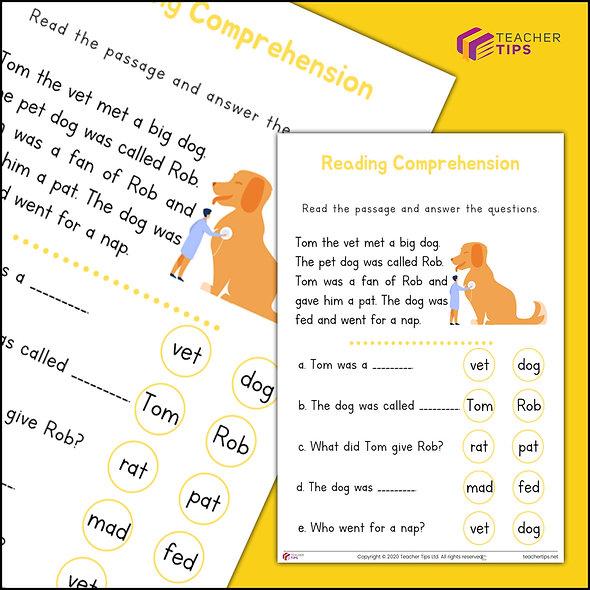 Reading Comprehension - Worksheet #3