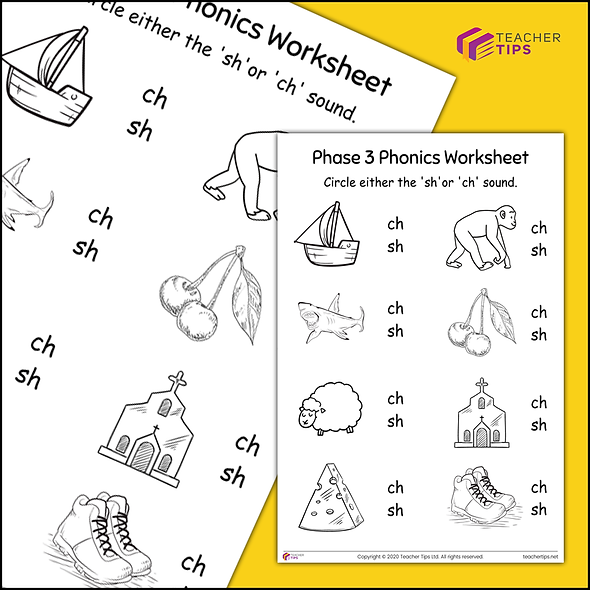 Phase 3 Phonics 'sh and ch' Worksheet #3
