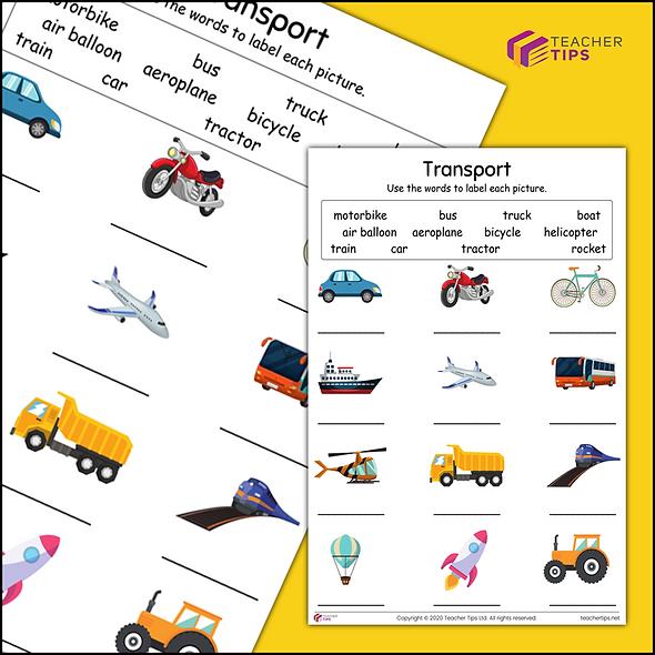 Transport - Worksheet #1