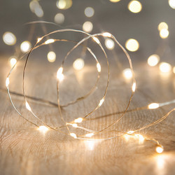wire firefly fairy lights