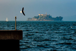 Alcatraz II