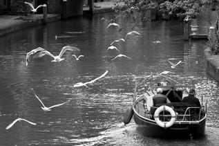 Utrecht Boat