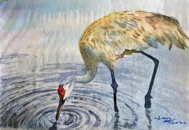 A Thirsty Crane
