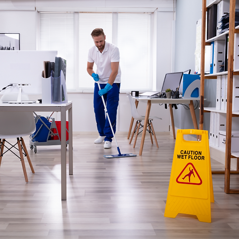 Area 81 Cleaning Services