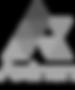 Axinan Logo Working File-1.png