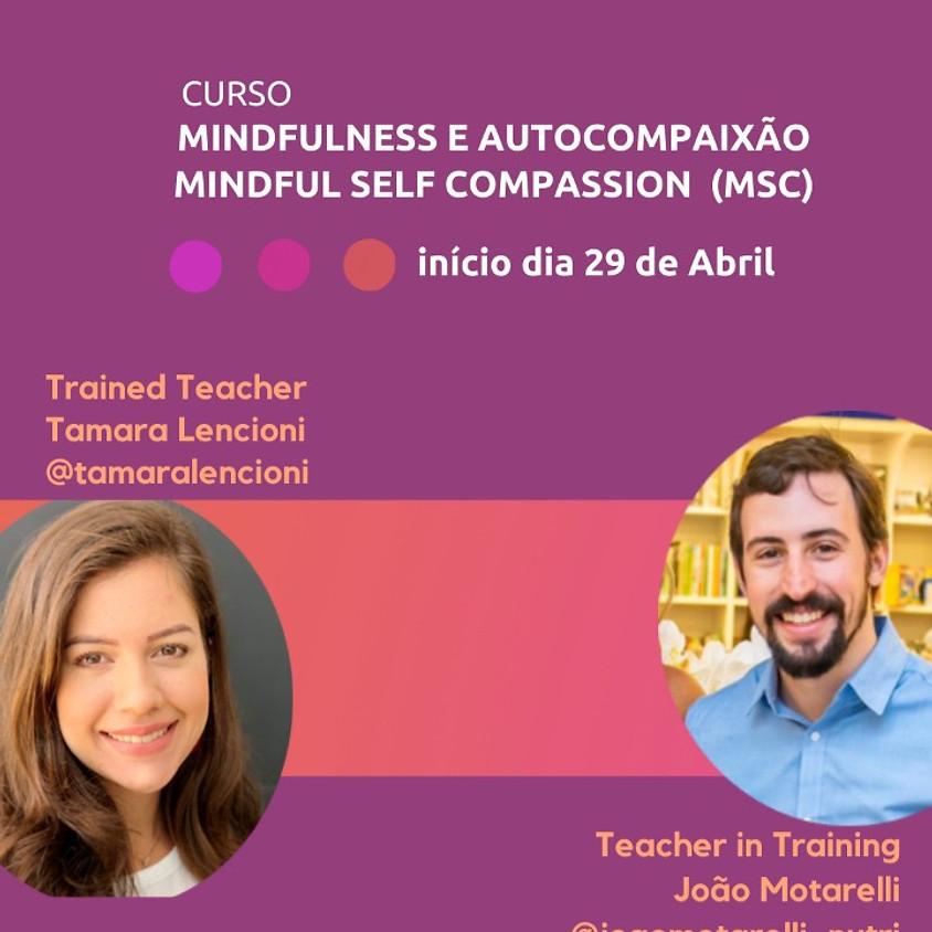 CURSO ON-LINE MINDFULNESS E AUTOCOMPAIXÃO - MINDFUL SELF-COMPASSION MSC