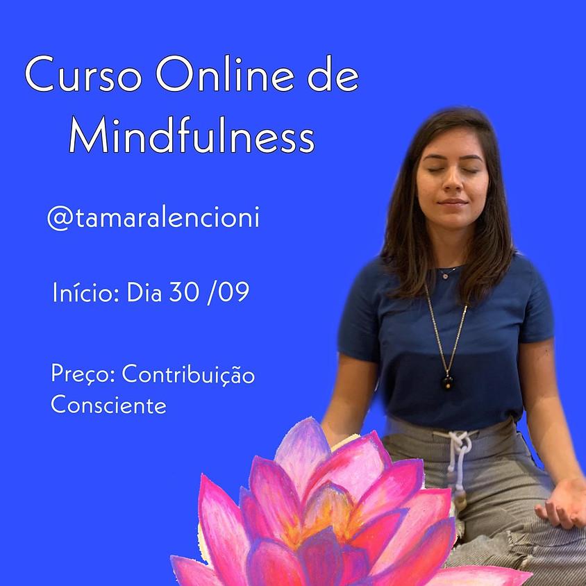 Curso de Mindfulness, Atenção Plena  (1)