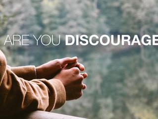 Dear Discouraged