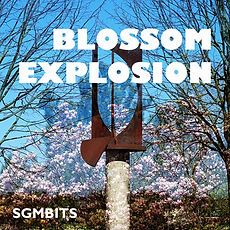 Blossom_Explosion.jpg
