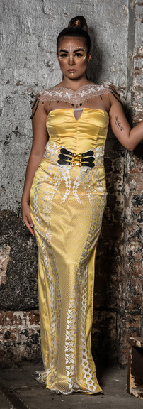 The Janina Effect Warrior Dress