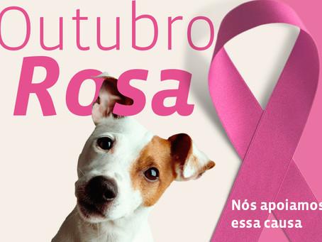 Tumor de mama em cadelas e gatas: Perspectivas e Orientações