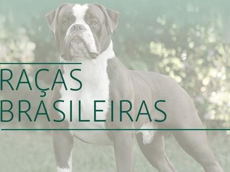 Raças Brasileiras de cães
