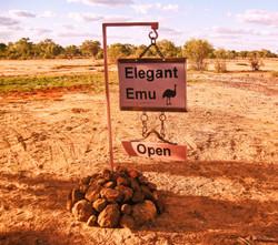 Welcome to Elegant Emu