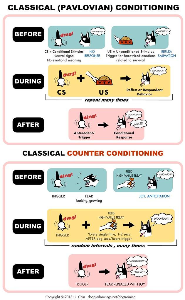 Conditionnement classique et contre-conditionnement