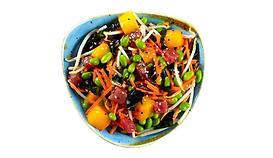 Sweet Tuna (Sommer Favorite) Fishbowl