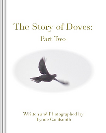 Screenshot 2021-10-20 at 15-29-16 The Story of Doves Part Two by lynne goldsmith Blurb Boo