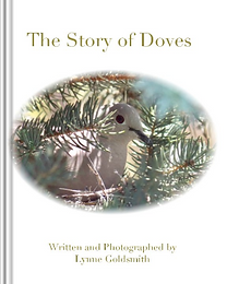 Screenshot 2021-09-08 at 16-17-24 The Story of Doves by Lynne Goldsmith Blurb Books.png