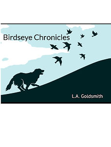 Birdseye Chronicles Title Page copy.jpeg
