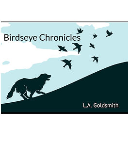Birdseye Chronicles Title Page copy.jpeg