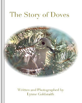 Screenshot 2021-09-08 at 16-17-24 The Story of Doves by Lynne Goldsmith Blurb Books_edited