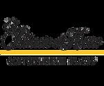 palacio-de-hierro-logo.png